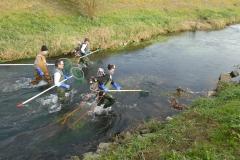 Abfischen r Hintergraben 5