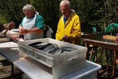 Fischverkauf21_10