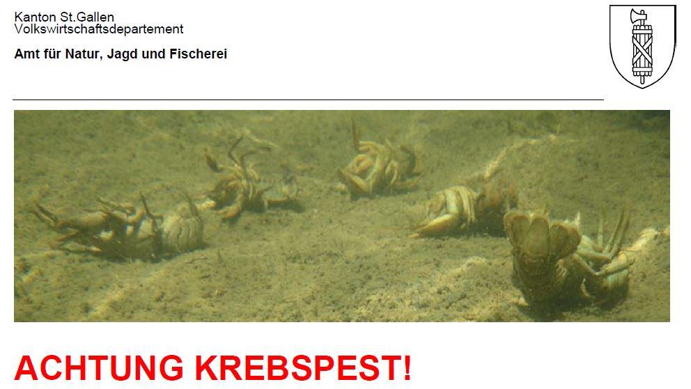 Infotafel_Krebspest